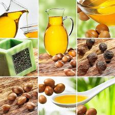 L'huile d'argan